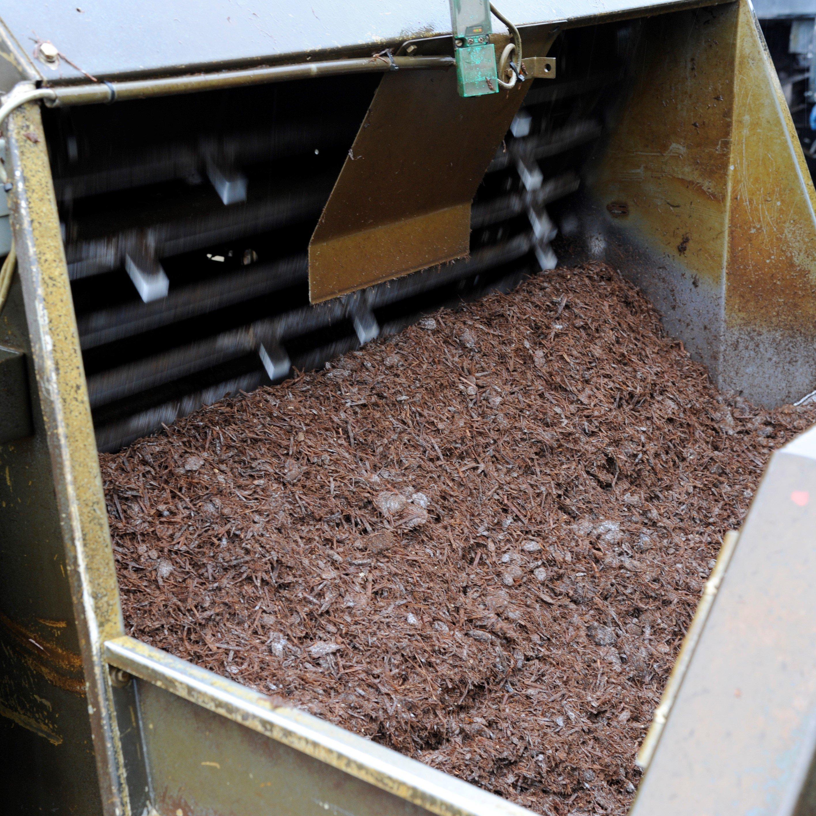 Mushroom compost phase III