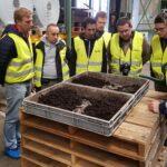 casing soil mushroom cultivation