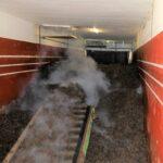 Filling Mushroom Tunnel