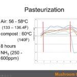 Pasteurisation process